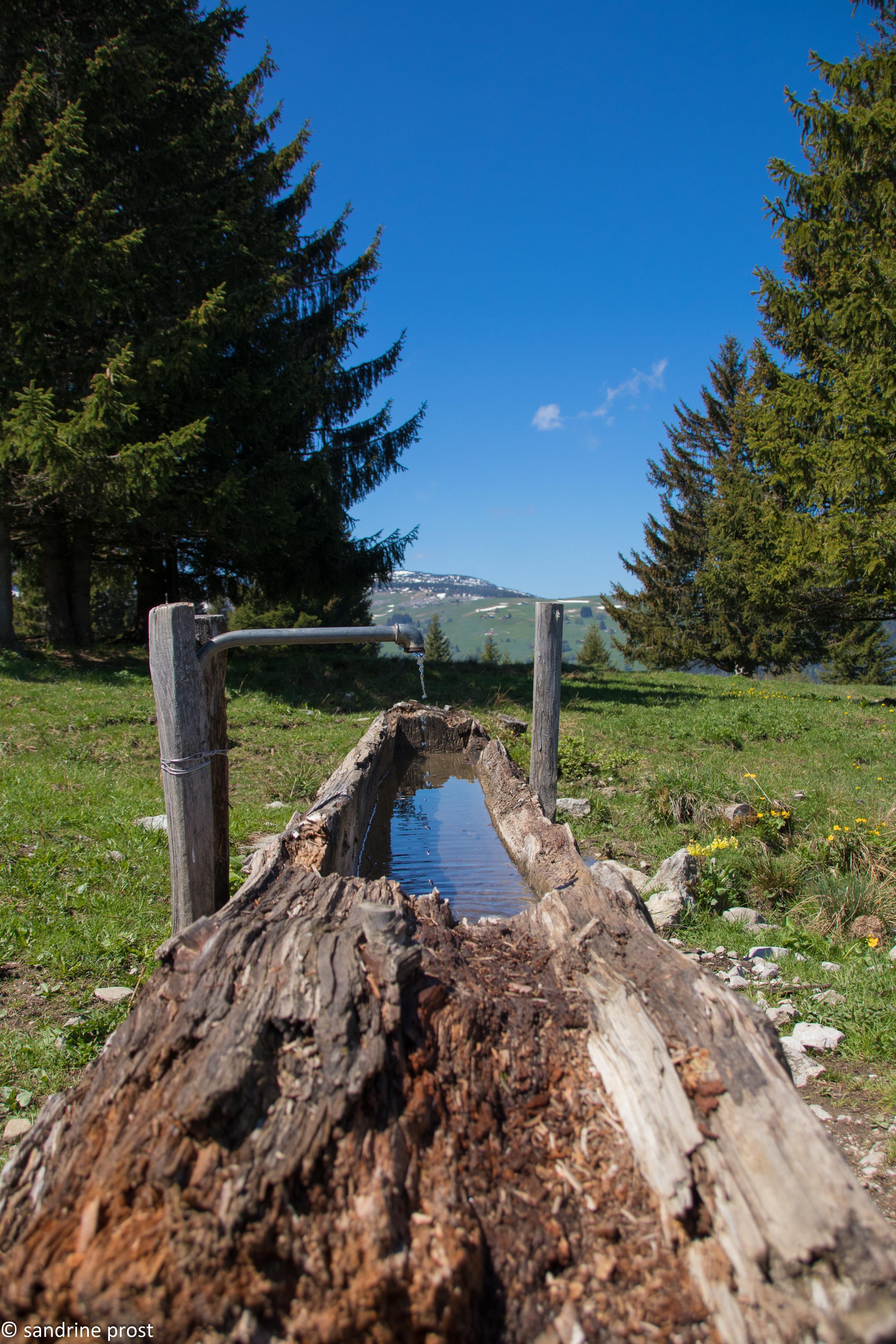 Lac bénit Sandrine Prost 2