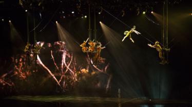 Cirque du soleil sp formation photo6